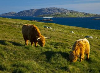 Things to do in the Outer Hebrides